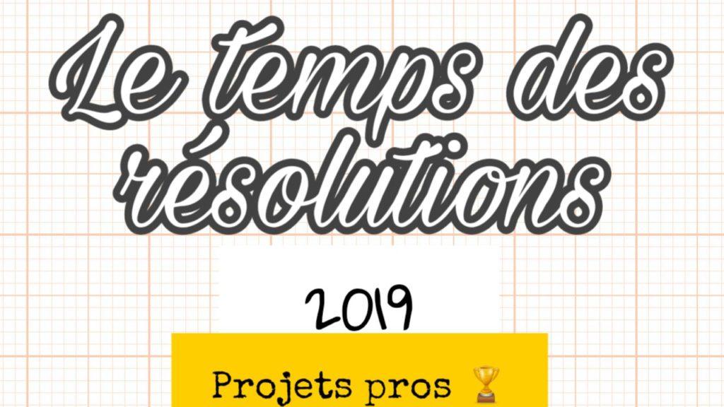 résolutions professionnelle 2018 entreprise batiment